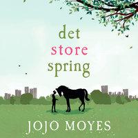 Det store spring - Jojo Moyes
