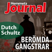 Dutch Schultz – En ensamvarg i gangstervärlden - Johan G. Rystad,Hemmets Journal