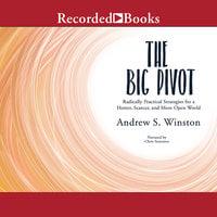 The Big Pivot - Andrew Winston