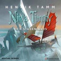 Ninja Timmy och staden av is - Henrik Tamm