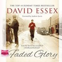 Faded Glory - David Essex
