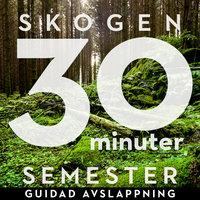 30 minuter semester - SKOGEN - Ola Ringdahl