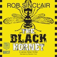 The Black Hornet (James Ryker Book 2) - Rob Sinclair