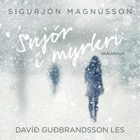 Snjór í myrkri - Sigurjón Magnússon