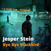 Bye bye blackbird - Stein Jesper