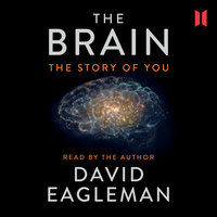 The Brain - The Story of You - David Eagleman