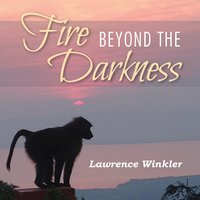 Fire Beyond the Darkness - Lawrence Winkler
