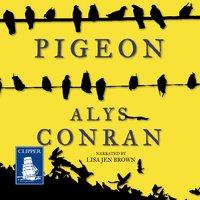 Pigeon - Alys Conran