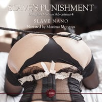 Slave's Punishment - Slave Nano