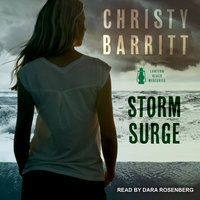 Storm Surge - Christy Barritt