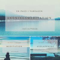 En paus i vardagen - Lina Molander