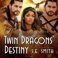Twin Dragons' Destiny - S.E. Smith