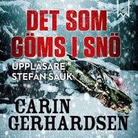 Det som göms i snö - Carin Gerhardsen