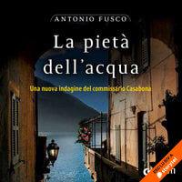 La pietà dell'acqua - Antonio Fusco