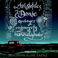Aristoteles og Dante opdager universets hemmeligheder - Benjamin Alire Sáenz,Benjamin Sáenz