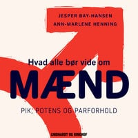 Hvad alle bør vide om mænd. Pik, potens og parforhold - Ann Henning, Bay Bay, Jesper Bay Hansen, Ann-Marlene Henning