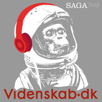 Videnskab.dk #1 - Den største misforståelse om vikingetiden - – Videnskab.dk