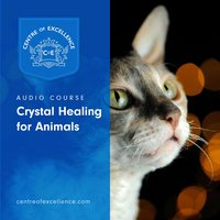 Crystal Healing for Animals - Centre of Excellence