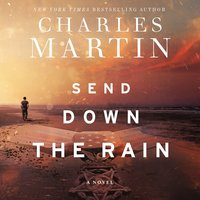 Send Down the Rain - Charles Martin