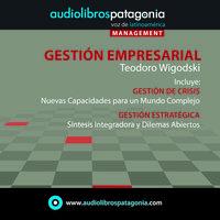 Gestión Empresarial - Teodoro Wigodski