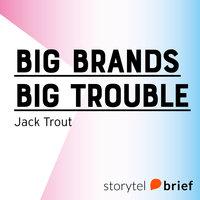 Big Brands Big Trouble - Jack Trout