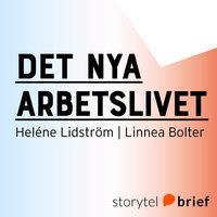 Det nya arbetslivet - Heléne Lidström,Linnea Bolter
