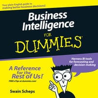 Business Intelligence For Dummies - Swain Scheps