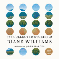 The Collected Stories of Diane Williams - Diane Williams