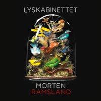 Lyskabinettet - Morten Ramsland