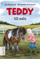Teddy till salu - Lin Hallberg