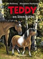 Teddy – en liten hjälte - Lin Hallberg
