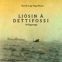Ljósin á Dettifossi - Davíð Logi Sigurðsson