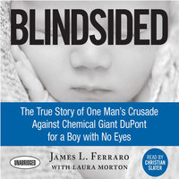 Blindsided - James L. Ferraro