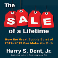 The Sale a Lifetime: How the Great Bubble Burst of 2017-2019 Can Make You Rich - Harry S. Dent