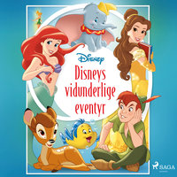 Disneys vidunderlige eventyr - Disney