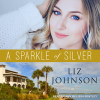 A Sparkle of Silver - Liz Johnson