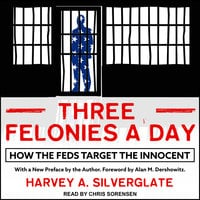 Three Felonies A Day: How the Feds Target the Innocent - Harvey A. Silverglate