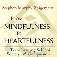 From Mindfulness to Heartfulness - Stephen Murphy-Shigematsu