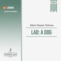 Lad: A Dog - Albert Payson Terhune