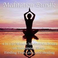 Meditation Bundle: 4 in 1 30 Minute Meditation Books On Happiness, Sleep, Finding True Love, And Healing - Living In Bliss Productions