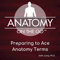 Preparing To Ace Anatomy Terms - Seth Jump