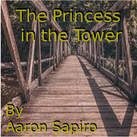 The Princess in the Tower - Aaron Sapiro