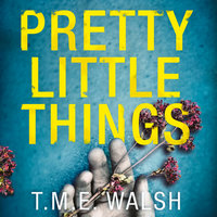Pretty Little Things - T.M.E. Walsh