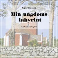 Min ungdoms labyrint - Sigurd Elkjær