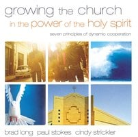 Growing the Church in the Power of the Holy Spirit - Brad Long, Paul K. Stokes, Cindy Strickler