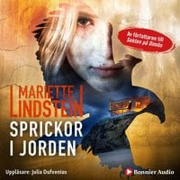 Sprickor i jorden - Mariette Lindstein