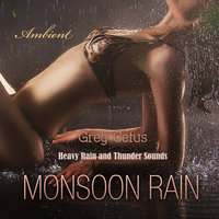 Monsoon Rain: Heavy Rain and Thunder Sounds - Greg Cetus