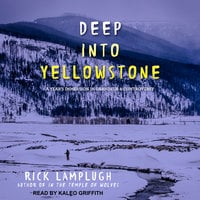 Deep into Yellowstone - Rick Lamplugh