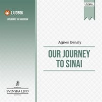 Our Journey to Sinai - Agnes Bensly