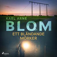 Ett bländande mörker - Karl Arne Blom